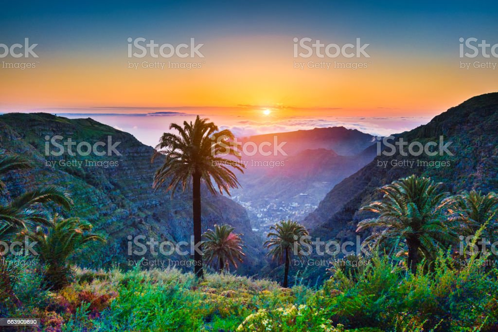 Amazing tropical scenery with palm trees and mountains at sunset stock photo