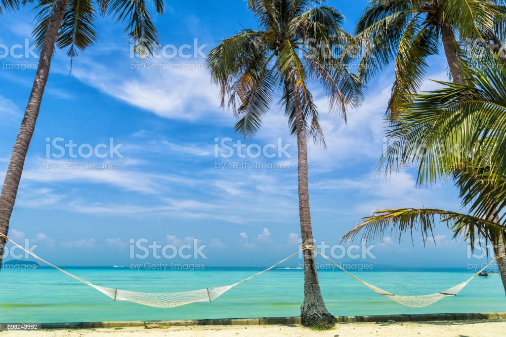 Amazing view of beautiful beach with palm trees, hammocks and transparent turquoise water. A great place to relax. Location: Ko Phi Phi Don island, Krabi province, Thailand, Andaman Sea. Artistic picture. Beauty world. stock photo