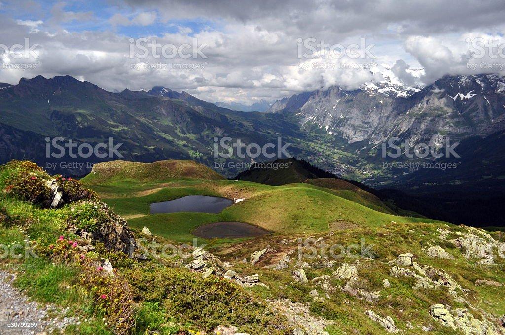 Amazing views, Wengen, Switzerland. stock photo