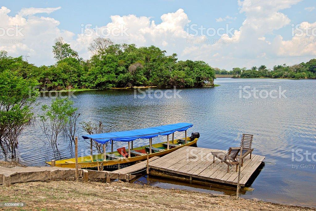 Amazon rainforest: Boat on the Amazon River near Manaus, Brazil stock photo