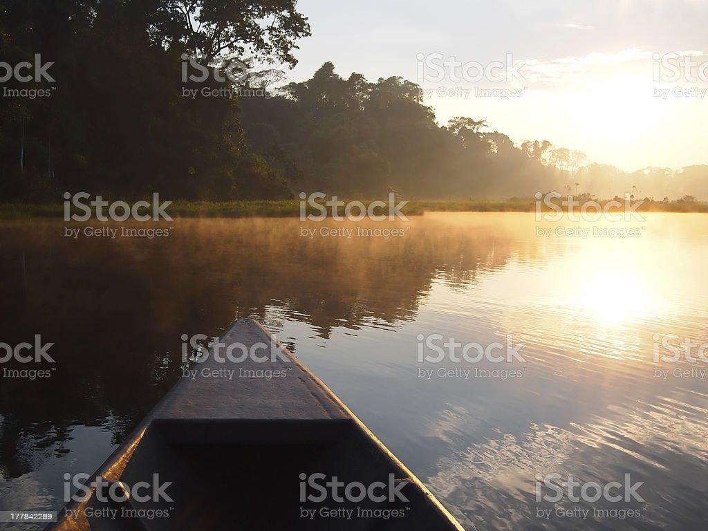 Amazon rainforest sunrise by boat stock photo