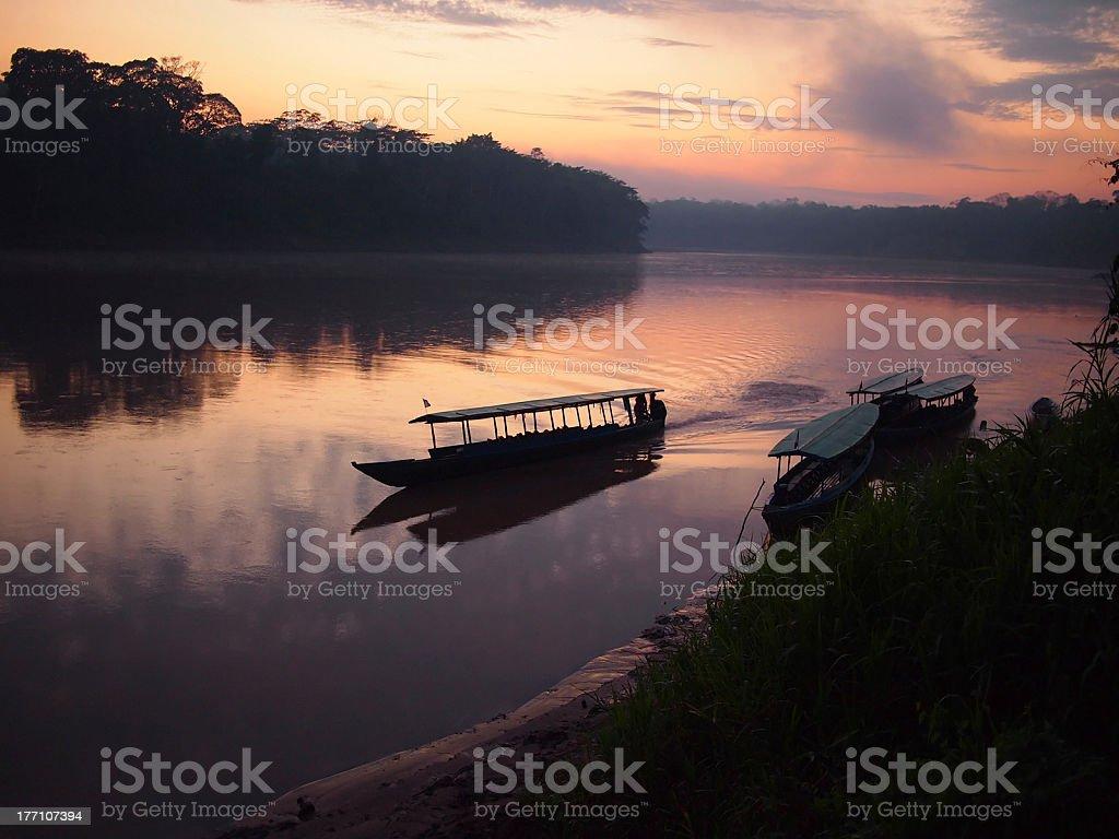 Amazon rainforest sunrise with a boat stock photo
