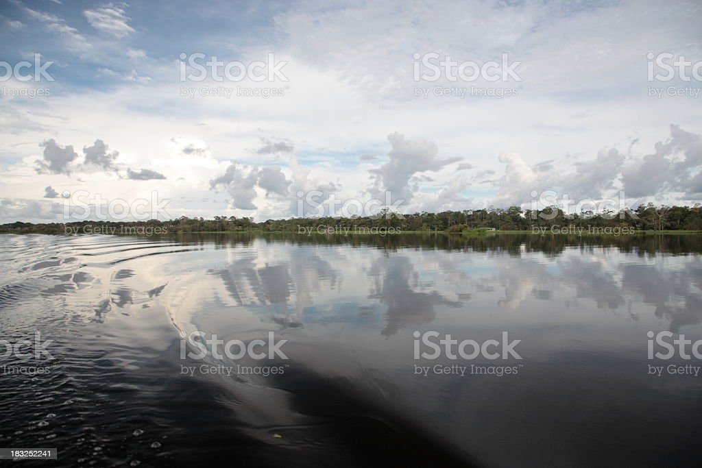 amazon river and jungle royalty-free stock photo