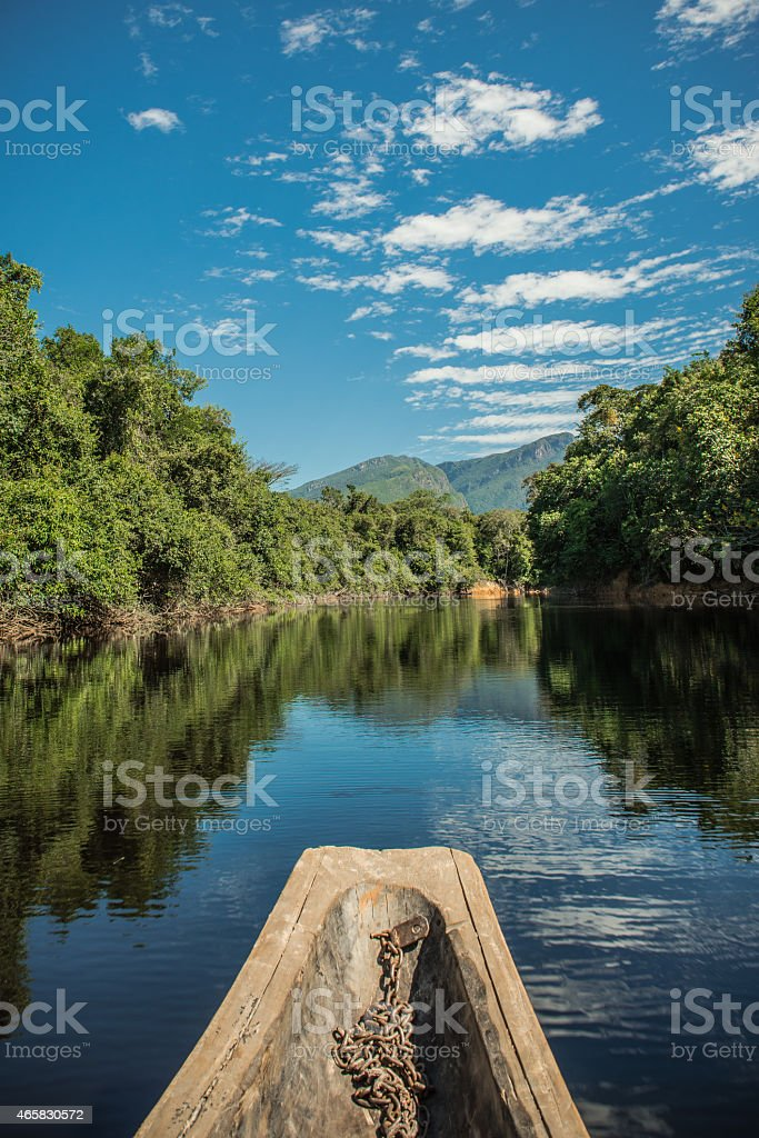 Amazon River Beauty stock photo
