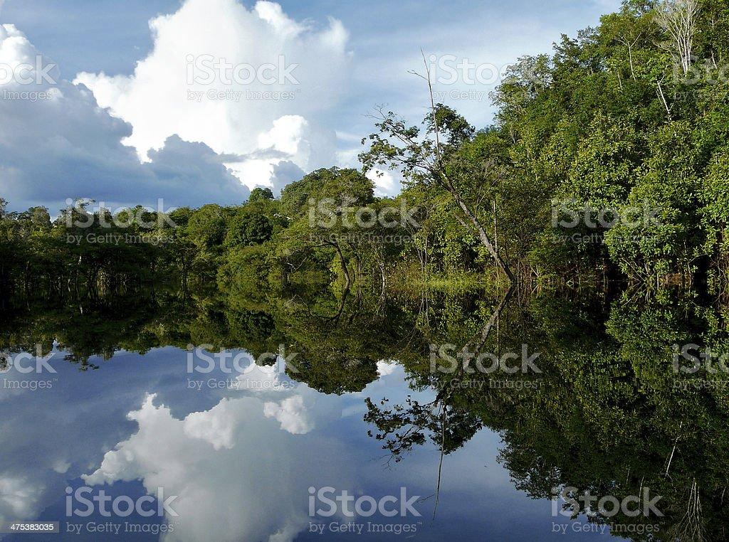 Amazon river, Brazil stock photo