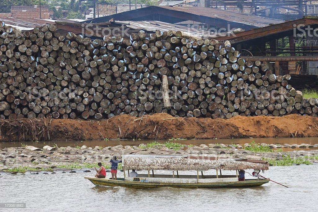 Amazon River logging stock photo