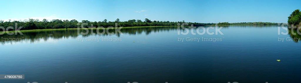 Amazon river panorama stock photo