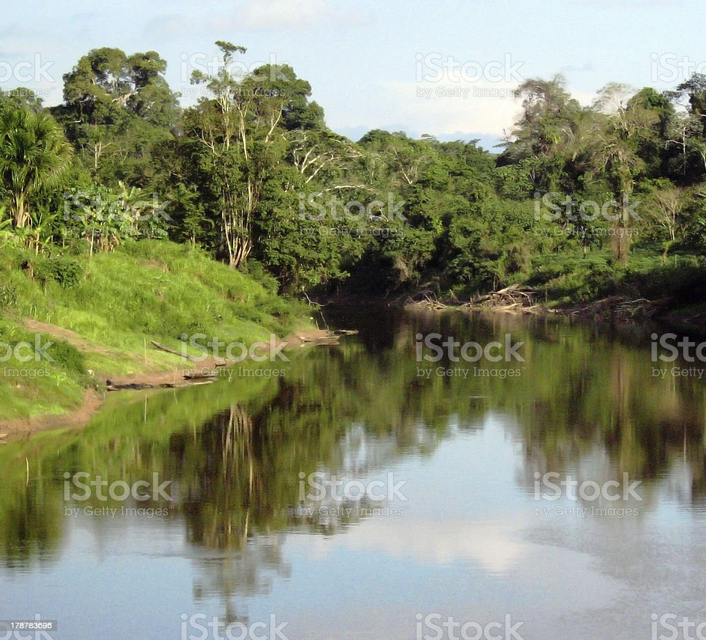 Amazon river royalty-free stock photo