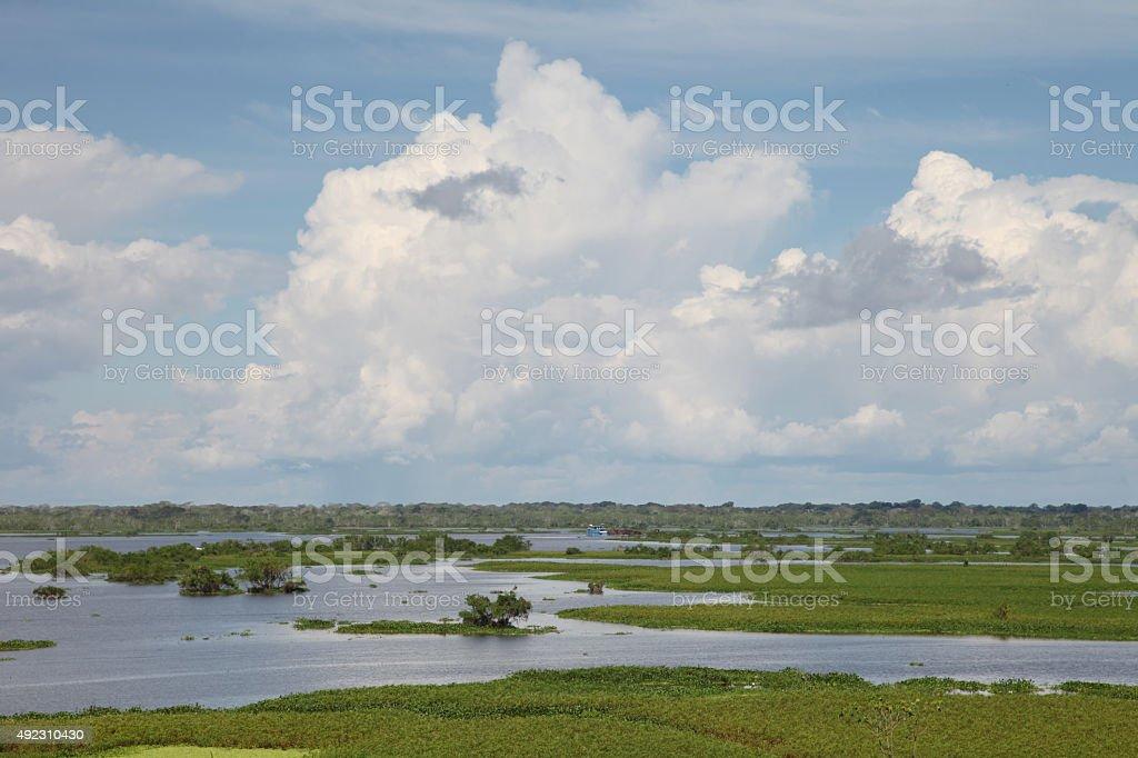 Amazonas landscape stock photo