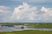 Amazonas landscape