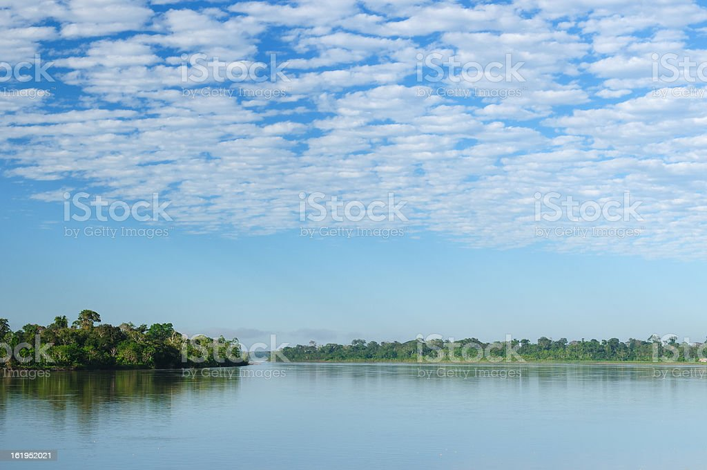 Amazonas royalty-free stock photo