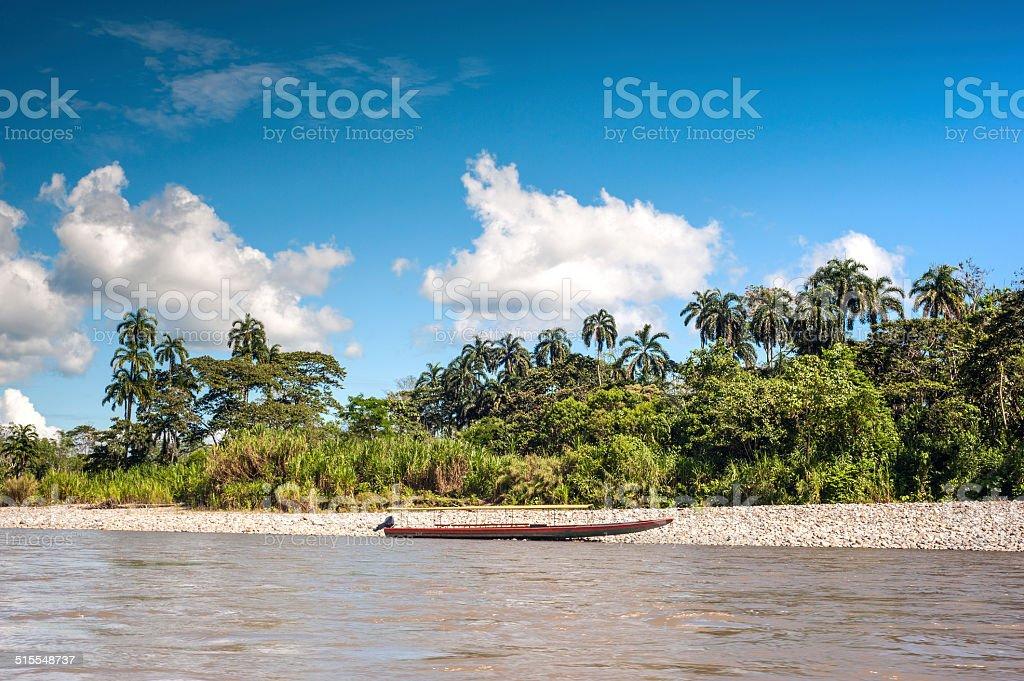 Amazonian rainforest. Napo River. Ecuador stock photo