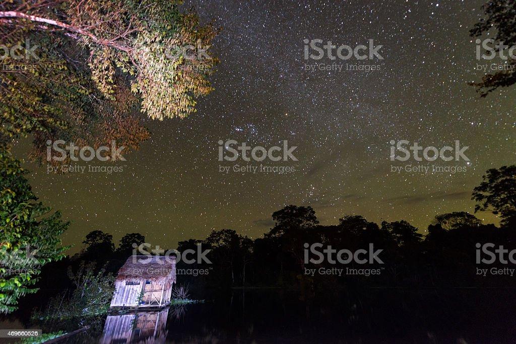 Amazonian Stars stock photo