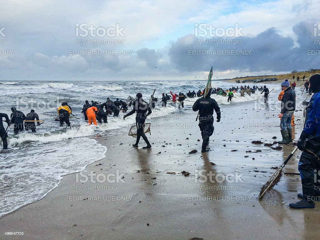 Amber catchers on the Baltic sea stock photo
