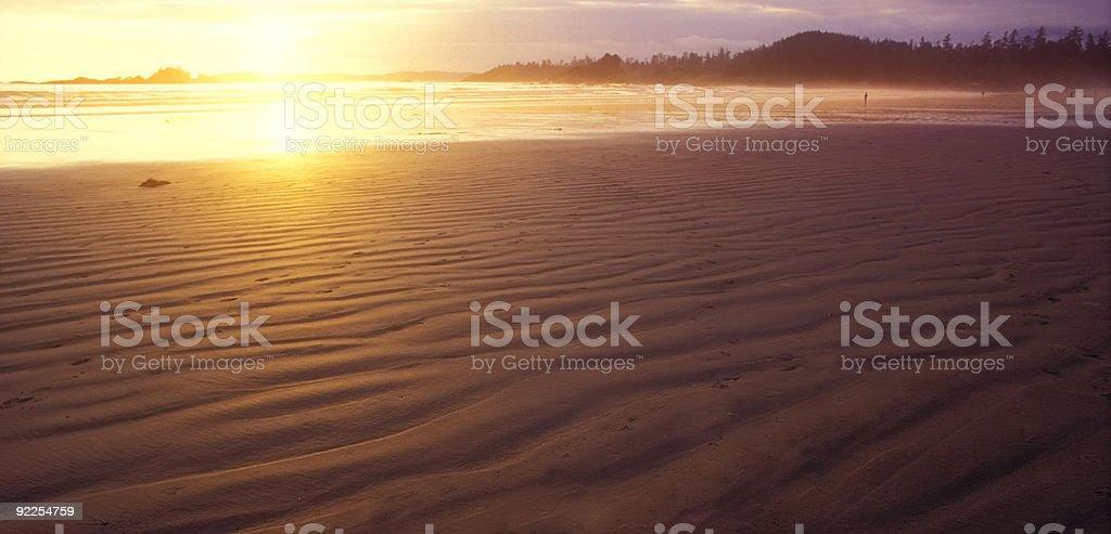 amber coast morning light royalty-free stock photo