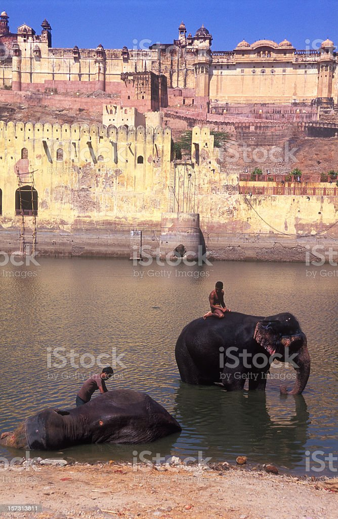 Amber Fort with Elephants royalty-free stock photo