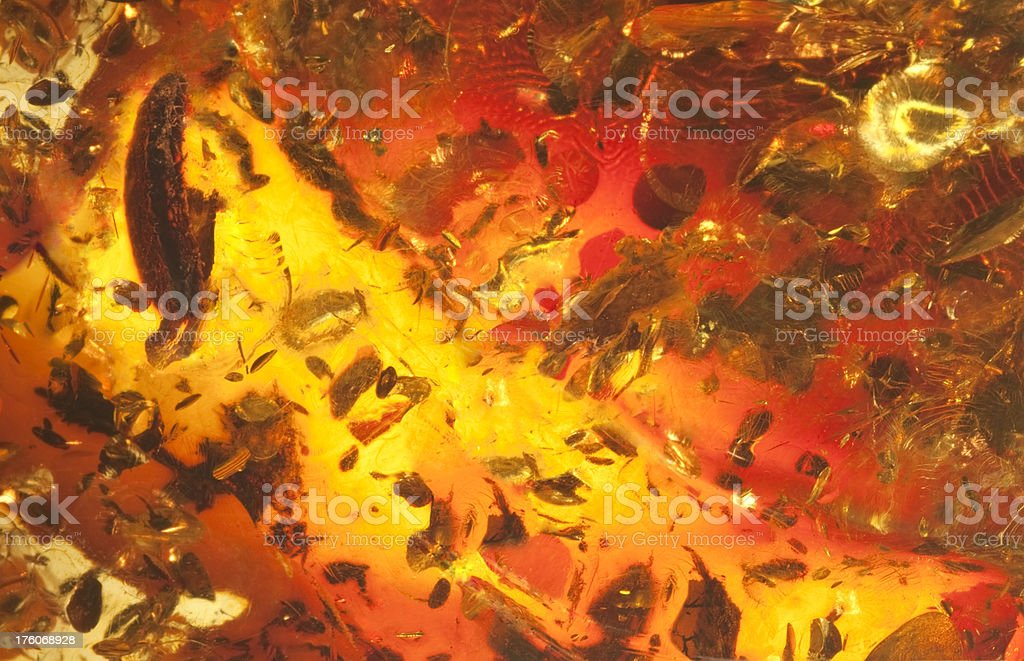 Amber Macro Abstract Background royalty-free stock photo