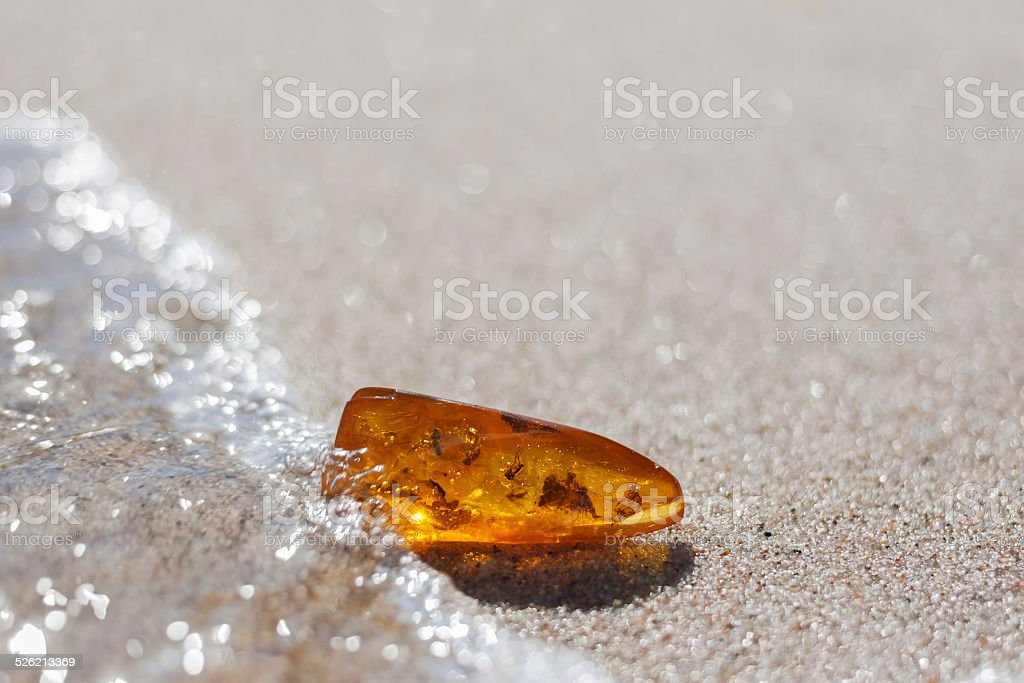 amber stone insect inclusion sand baltic seashore stock photo