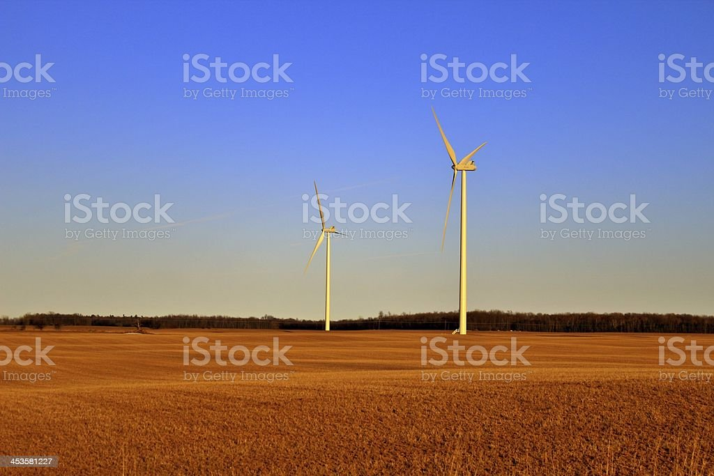 Amber Waves of Grain royalty-free stock photo