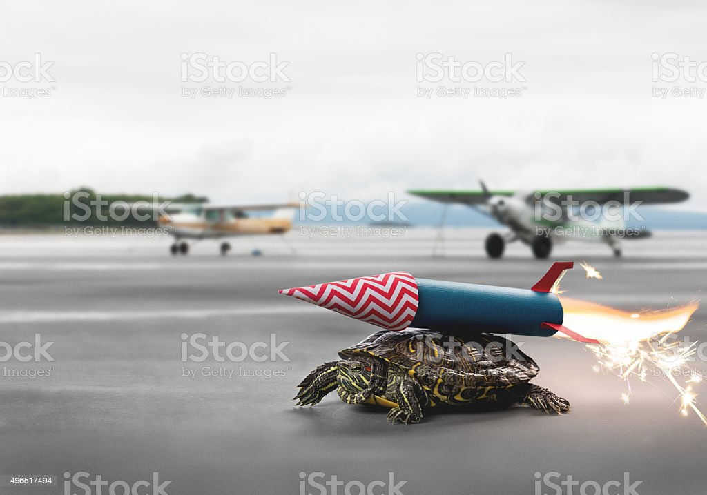 Ambitious turtle with rocket propulsion waiting to take flight stock photo