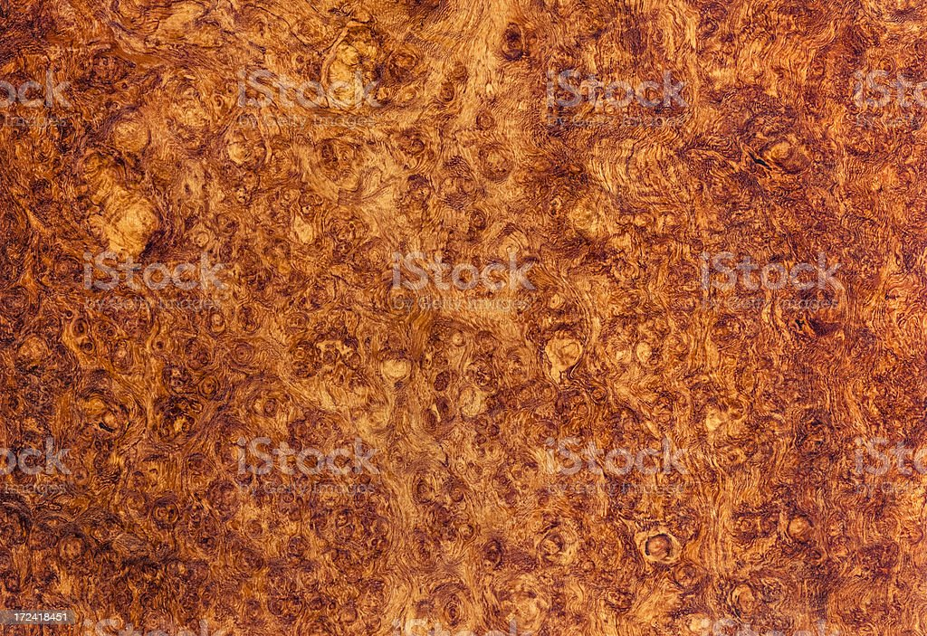 Amboyna Burl Wood Grain Background stock photo