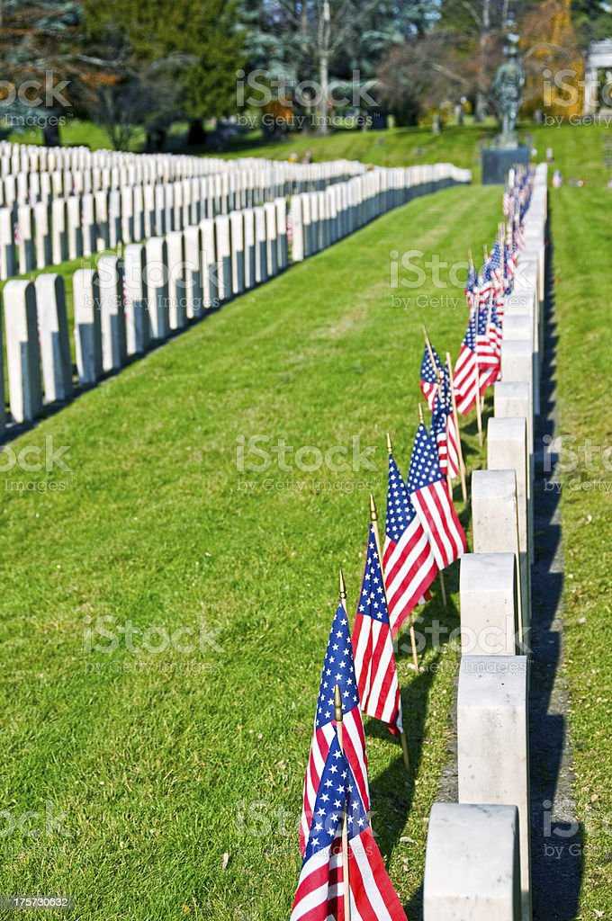 Amercian flags by gravestones on Veterans' Day at cemetery royalty-free stock photo