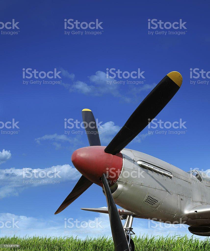 American Aircraft P-51 Mustang royalty-free stock photo