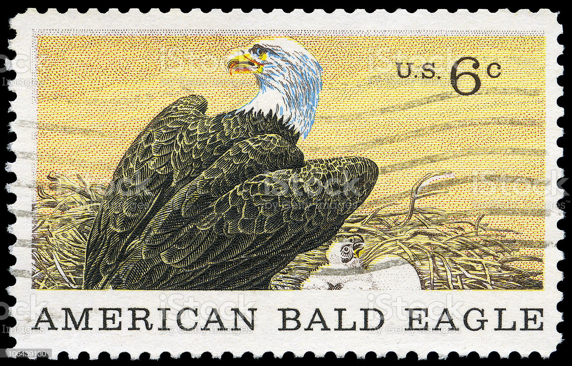 American Bald Eagle Stamp royalty-free stock photo