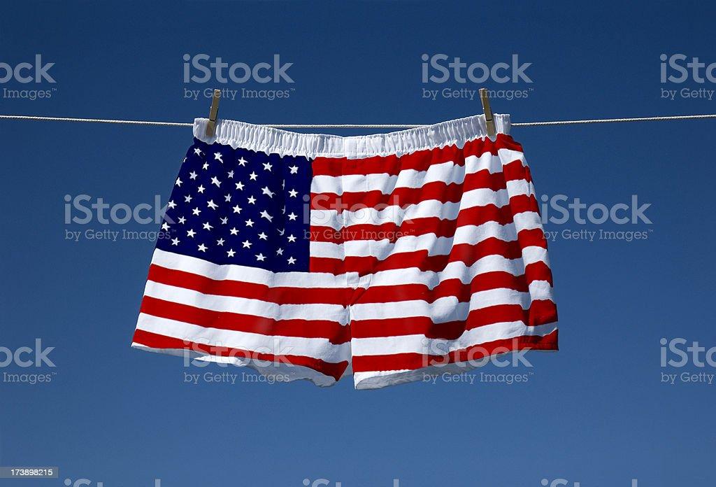 American Boxers stock photo