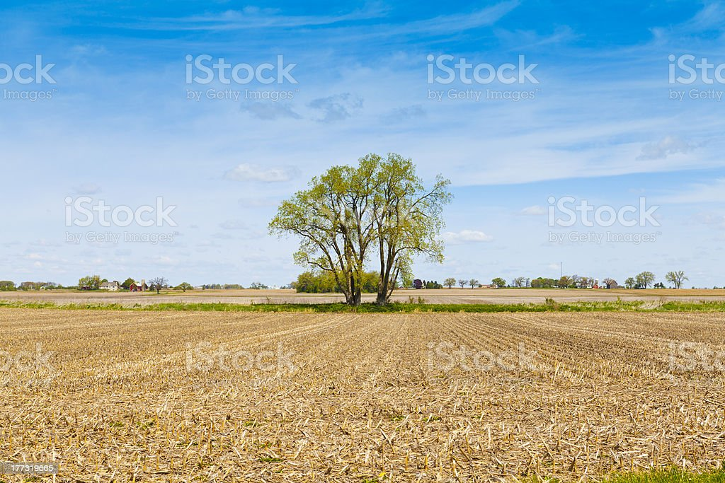 American Country royalty-free stock photo