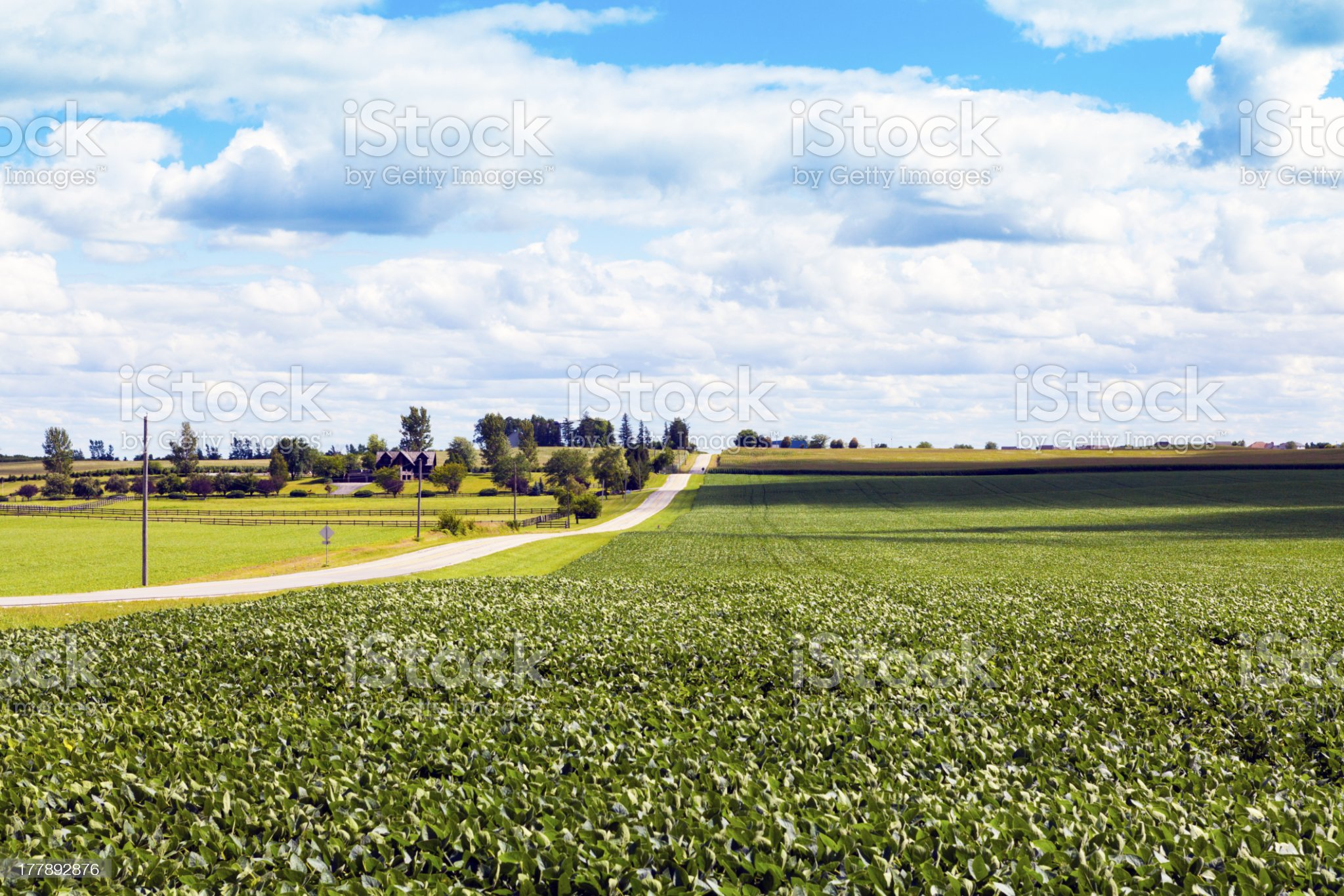 American Country Road royalty-free stock photo