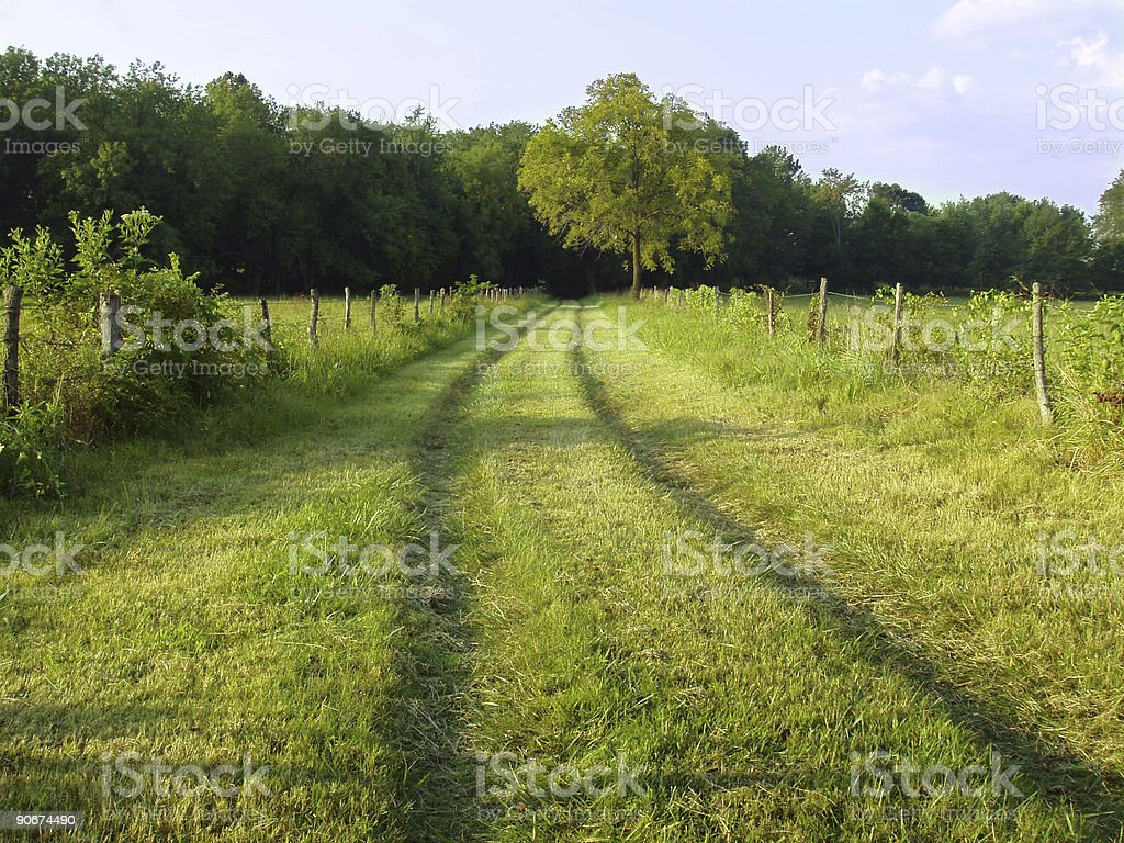 American Country Road - Rural Landscape royalty-free stock photo
