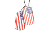 American Dog Tags, 3D rendering