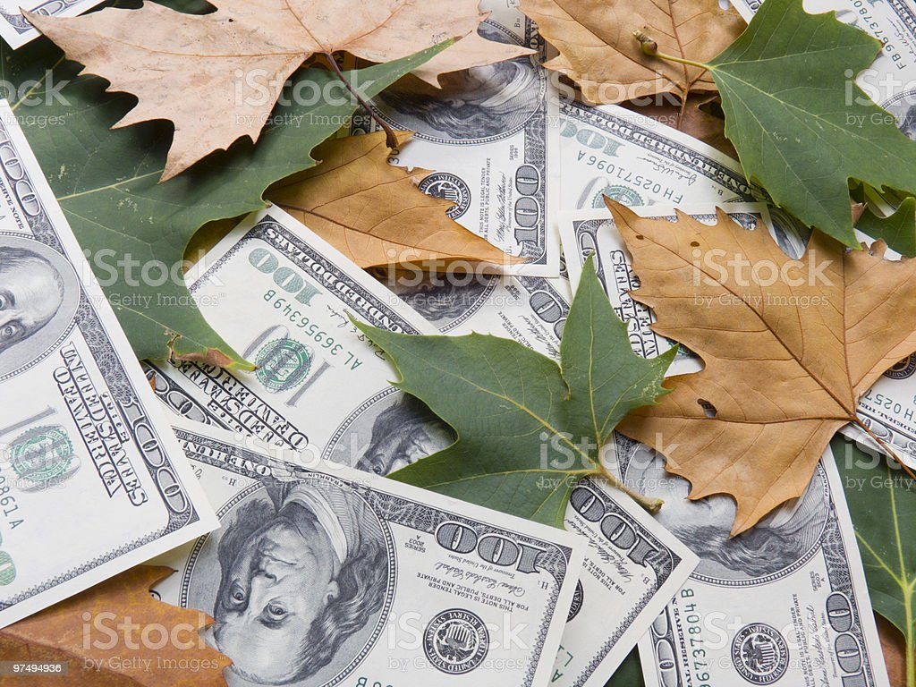 American dollars and autumn  leaves royalty-free stock photo