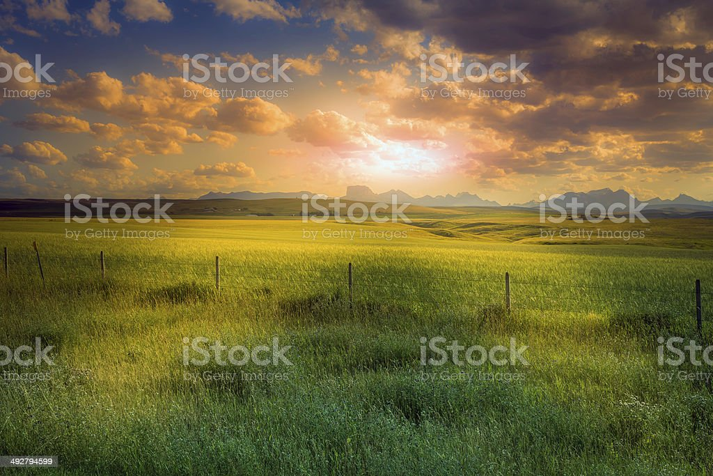 American farm during sunset stock photo