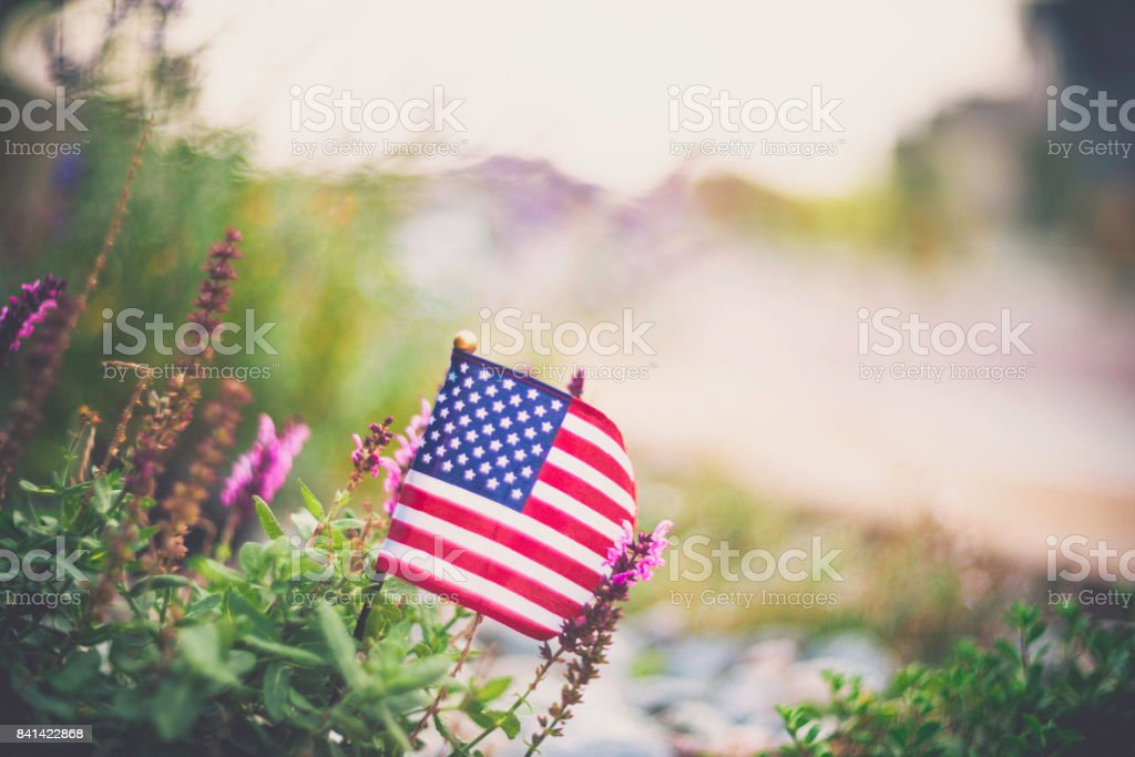 American flag background in Autumnal setting with vibrant flowers stock photo