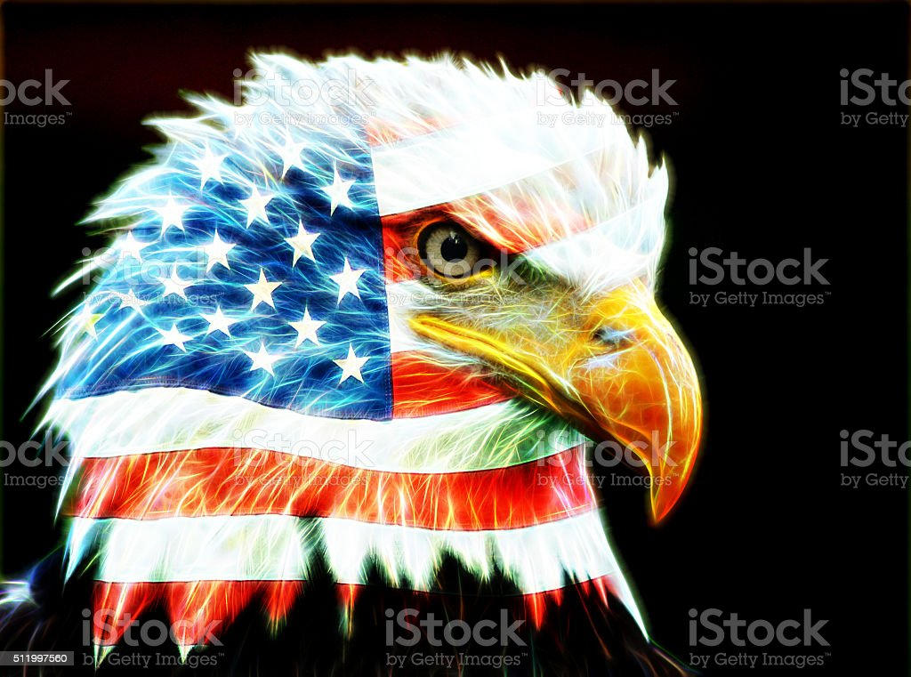 American Flag Bald Eagle stock photo