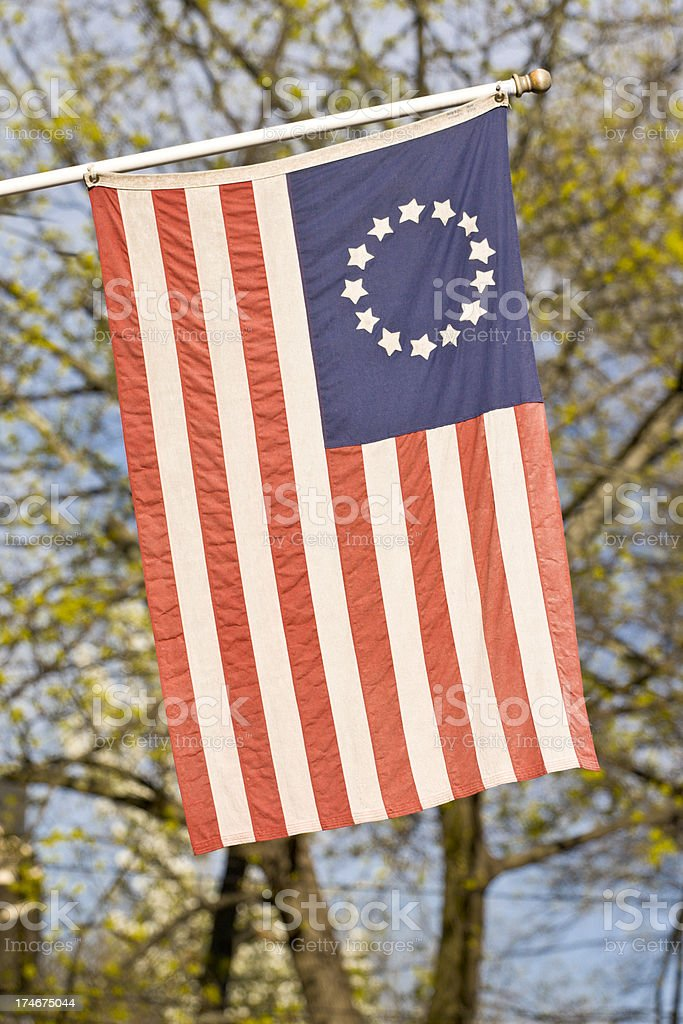American Flag in Spring stock photo