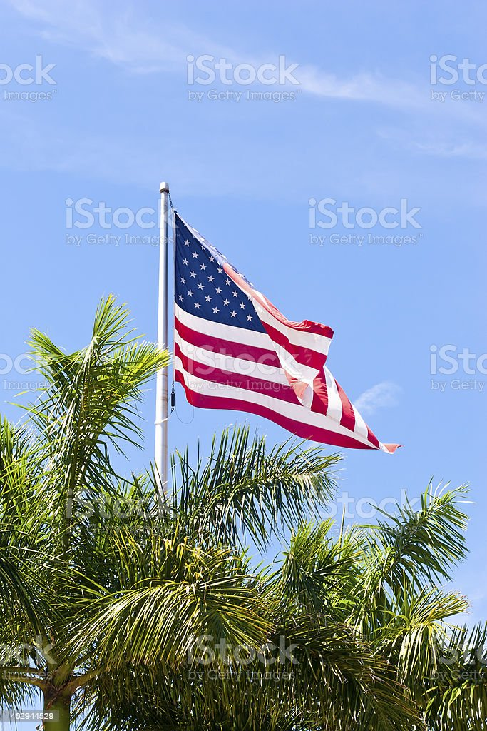 American Flag Over Palm Trees royalty-free stock photo