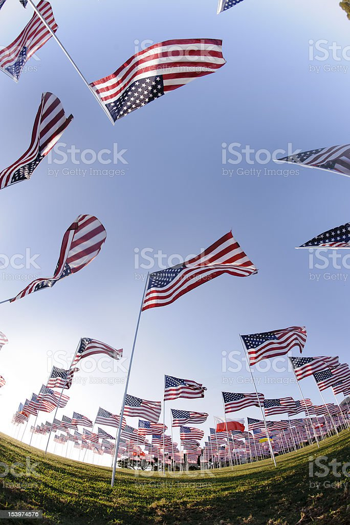 american flags against a blue sky royalty-free stock photo