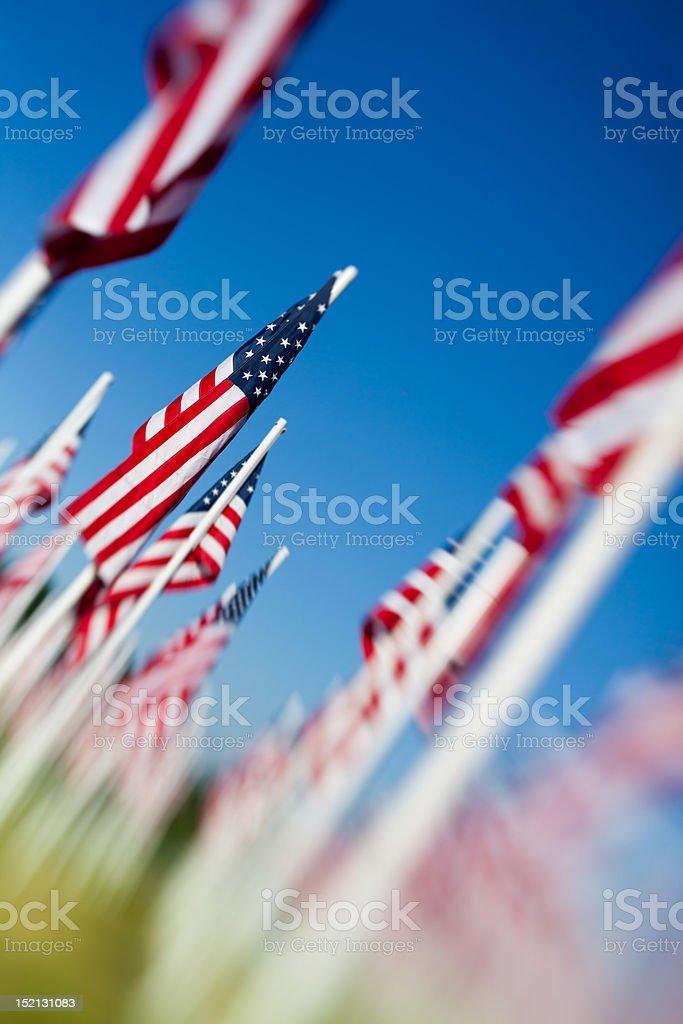 USA American flags arrangement stock photo