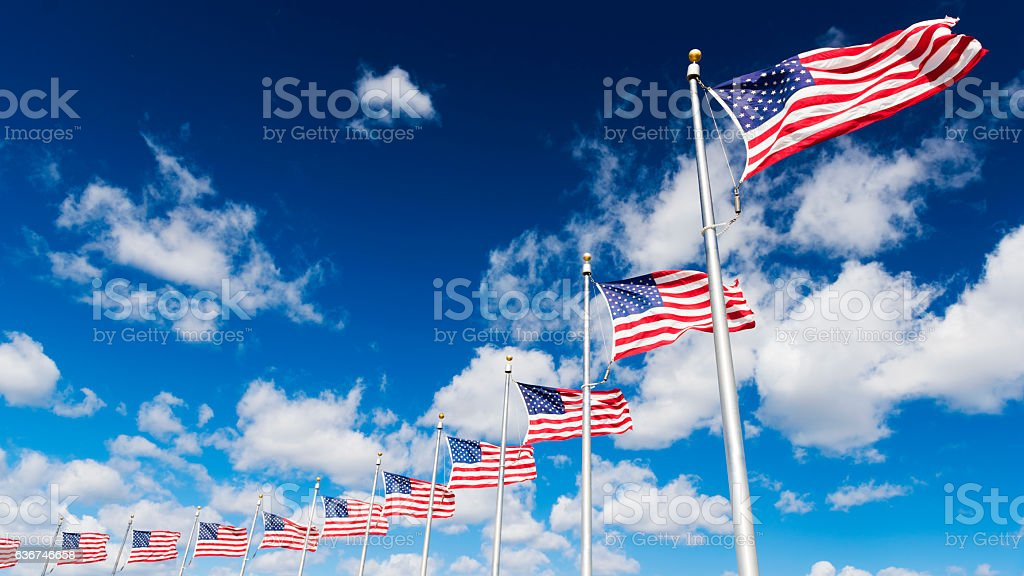 American Flags in a Row at Washington Memorial in D.C. stock photo