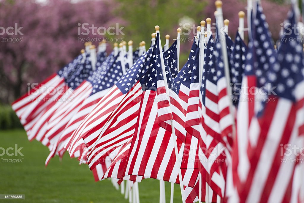 American flags in a row. stock photo