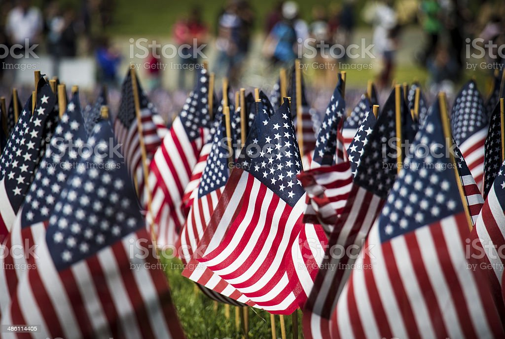 American Flags on Boston Common stock photo