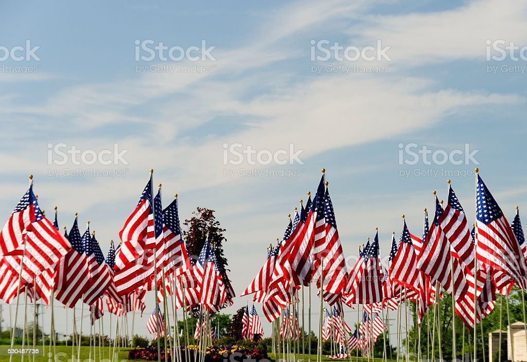 American Flags on Memorial Day at a Cemetery stock photo