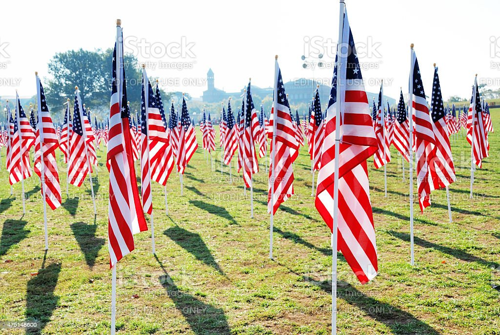 American flags on the National Mall for Veteran's Day memorial stock photo