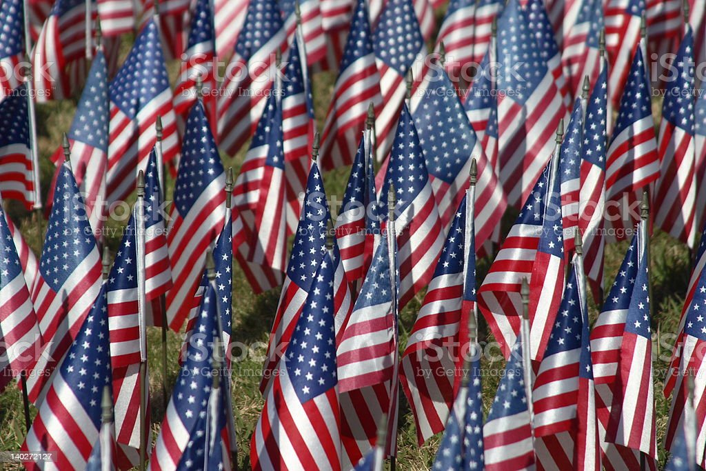 American Flags (Field of Dreams) royalty-free stock photo