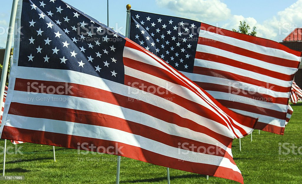 American Flags royalty-free stock photo