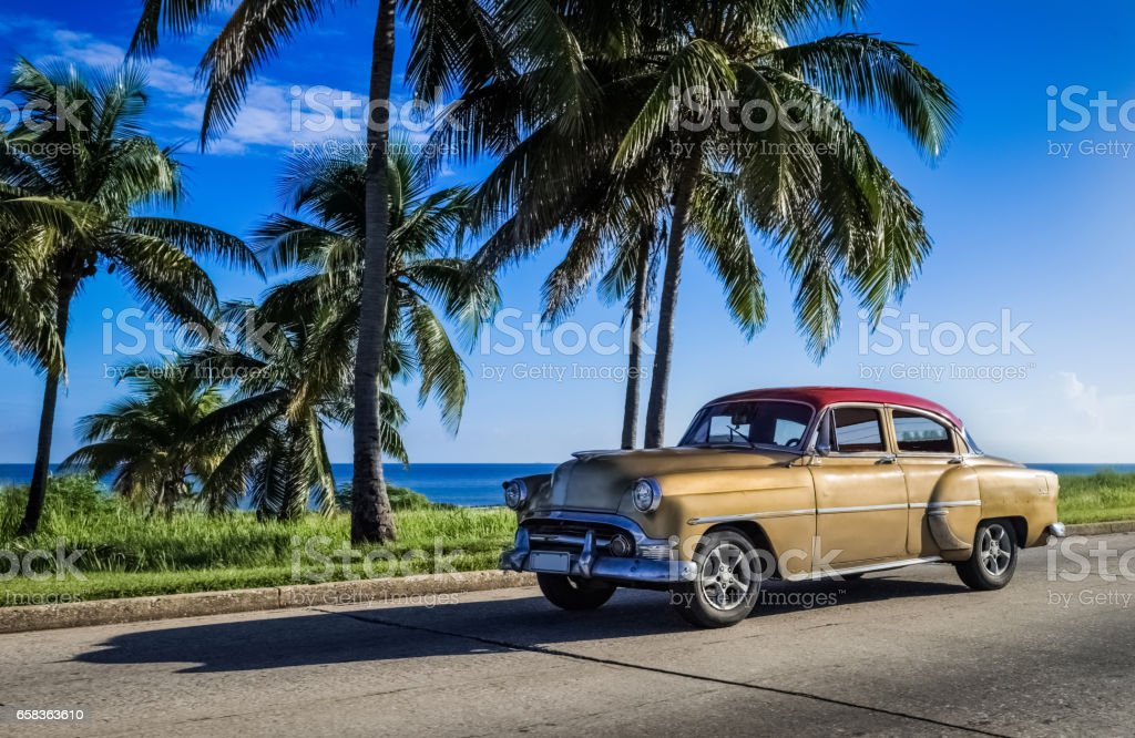 American golden vintage car drives under palms in Varadero Cuba stock photo