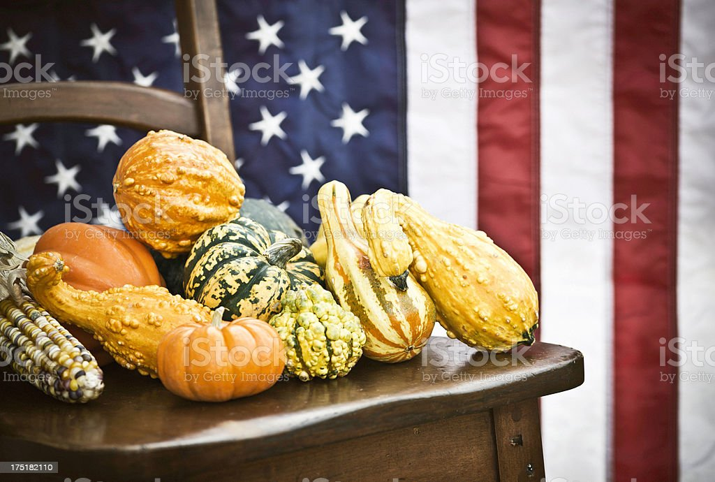 American Harvest of Gourds for Thanksgiving royalty-free stock photo